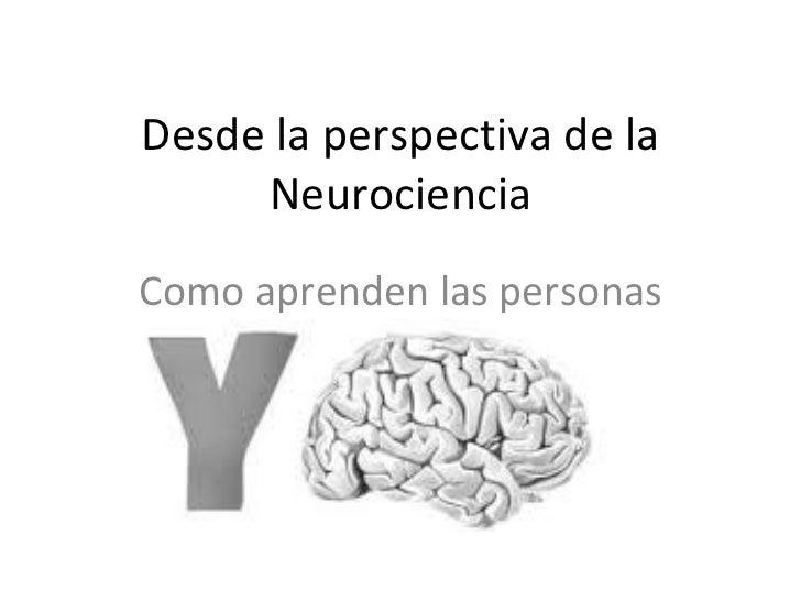 Desde la perspectiva de la Neurociencia Como aprenden las personas