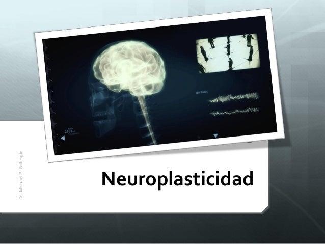 Neuroplasticidad Dr.MichaelP.Gillespie