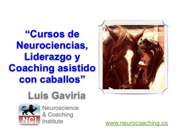 """Cursos de Neurociencias, Liderazgo y Coaching asistido con caballos"" Luis Gaviria www.neurocoaching.us"