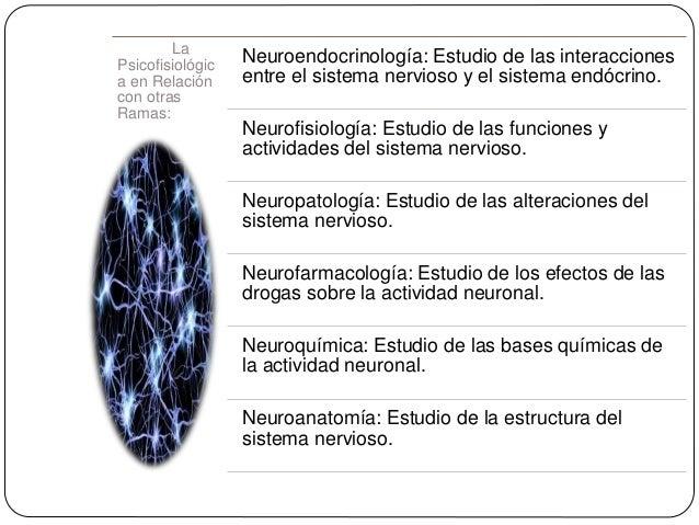 La Psicofisiológic a en Relación con otras Ramas: Neuroendocrinología: Estudio de las interacciones entre el sistema nervi...