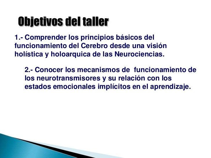 Neurociencias en el aula Slide 2