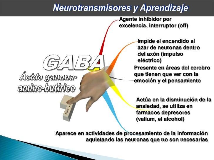 Neurociencias en el aula Slide 31