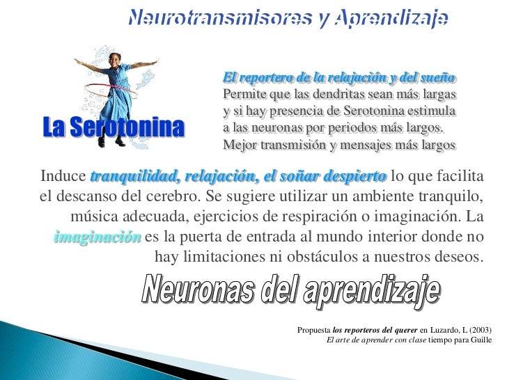 Neurociencias en el aula Slide 33