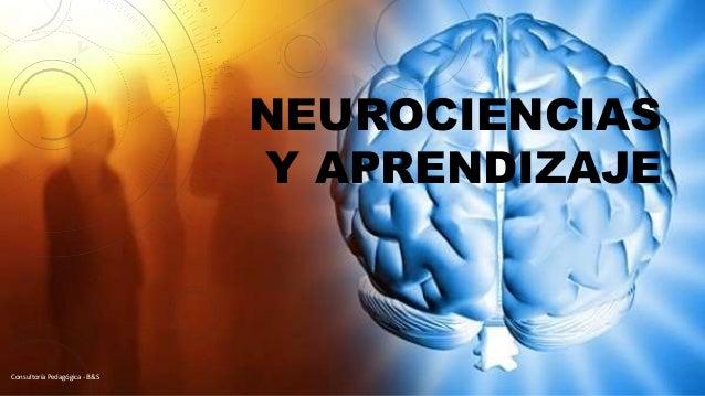 NEUROCIENCIAS Y APRENDIZAJE Consultoría Pedagógica - B&S