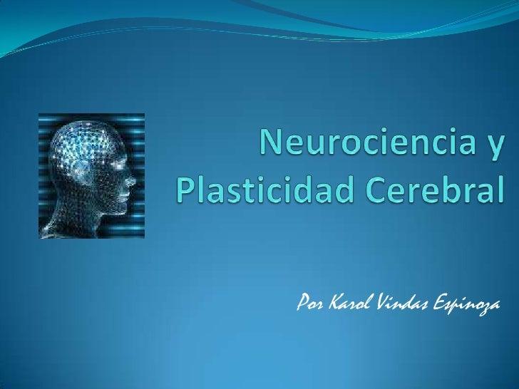 Neurociencia y Plasticidad Cerebral<br />Por Karol Vindas Espinoza<br />