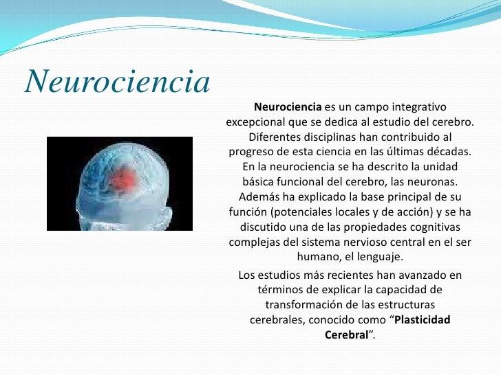 Neurociencia y plasticidad cerebral Slide 3