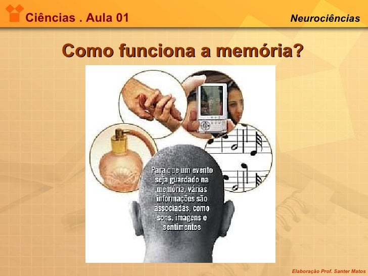 Ciências . Aula 01 Neurociências   Como funciona a memória?