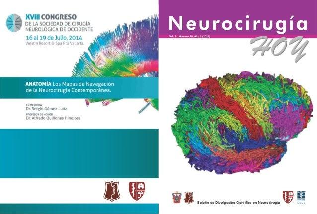 NeurocirugíaNeurocirugíaVol. 5 Numero 18 Año 6 (2014) Boletín de Divulgación Científica en Neurocirugía