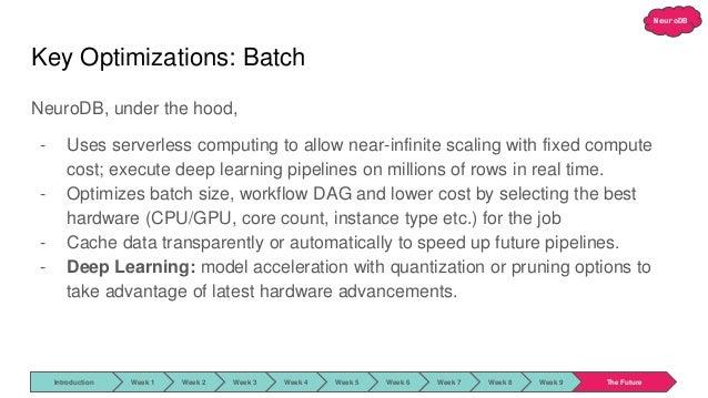 NeuroDB Key Optimizations: Batch NeuroDB, under the hood, - Uses serverless computing to allow near-infinite scaling with ...