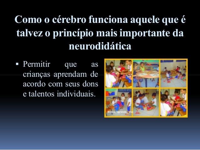Resultado de imagem para neurodidática na educação