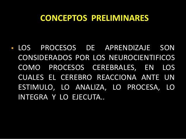 Neuro educacion Slide 3