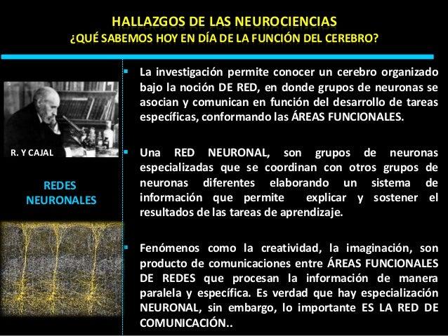Neuro educacion Slide 39