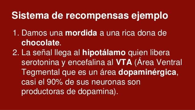 Sistema de recompensas ejemplo 5. La amígdala dá una respuesta respecto a si conlleva una emoción positiva o negativa. 6. ...