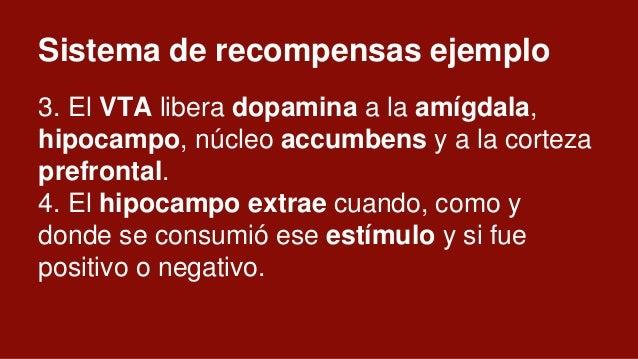 Sistema de recompensas ejemplo 7. El núcleo accumbens es el juez y recibe glutamato y dopamina de la amígdala, la CPF y el...