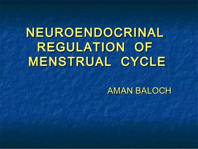 NEUROENDOCRINAL REGULATION OFMENSTRUAL CYCLE        AMAN BALOCH