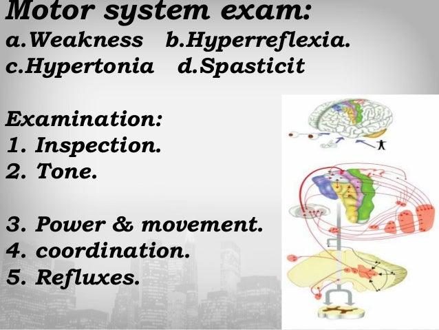 Neuro Exam Ppt