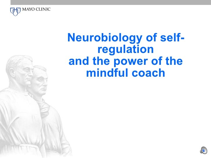Neurobiology of self-regulation and the power of the mindful coach