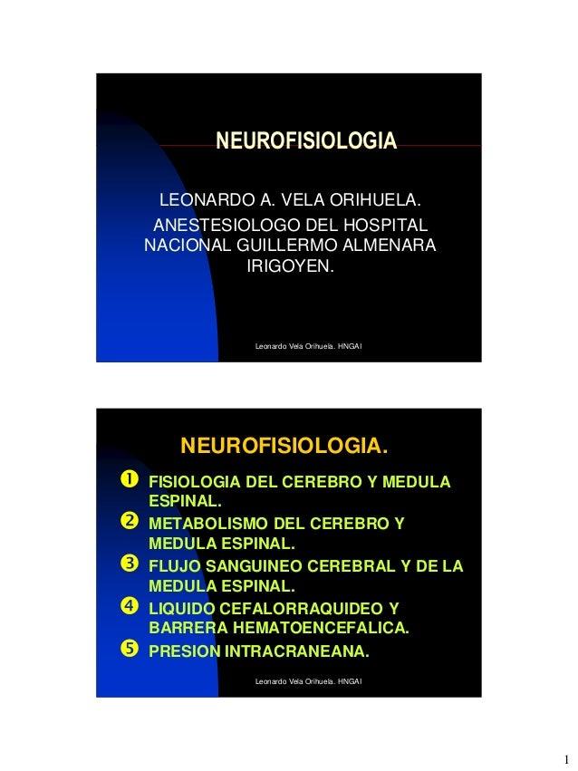 NEUROFISIOLOGIA      LEONARDO A. VELA ORIHUELA.     ANESTESIOLOGO DEL HOSPITAL    NACIONAL GUILLERMO ALMENARA             ...