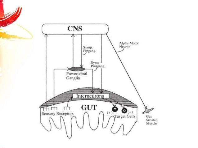 upper motor neuron neurogenic bowel