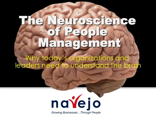 Why today's organizations and leaders need to understand the brain The Neuroscience of People Management