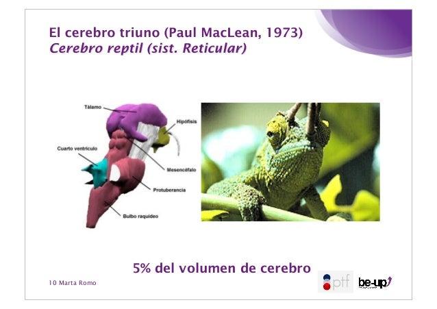 Neuroliderazgo pae2013 marta_romo
