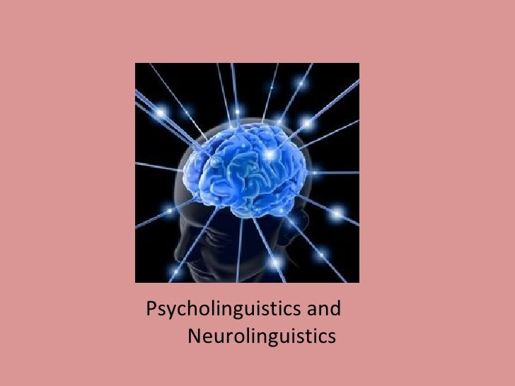 Psycholinguistics and  Neurolinguistics