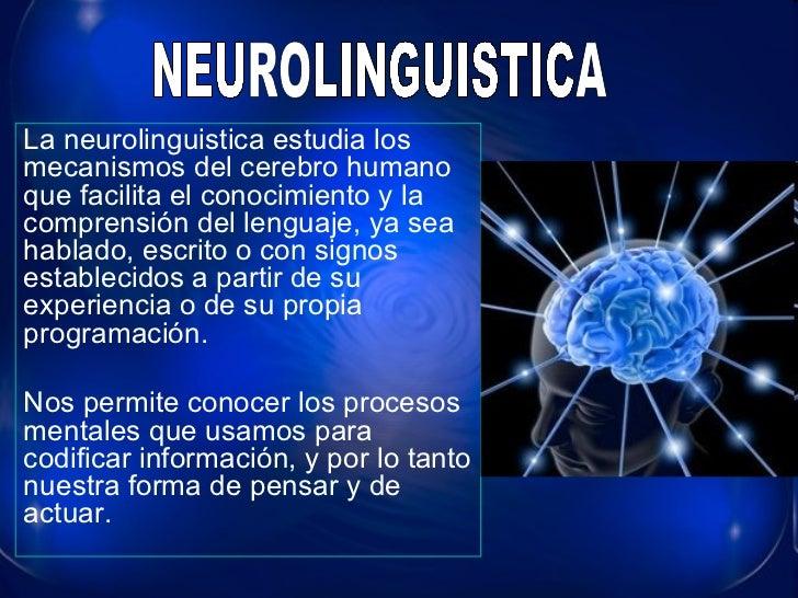 La neurolinguistica estudia los mecanismos del cerebro humano que facilita el conocimiento y la comprensión del lenguaje, ...