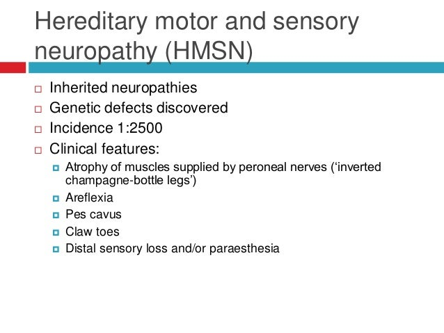 Distal hereditary motor neuropathy for What is motor neuropathy