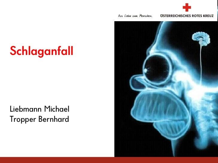 Schlaganfall    Liebmann Michael Tropper Bernhard                       Laubegg 2009
