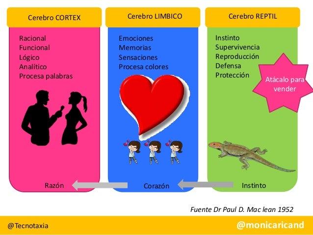 Cerebro CORTEX Racional Funcional Lógico Analítico Procesa palabras  Razón  Cerebro LIMBICO Emociones Memorias Sensaciones...