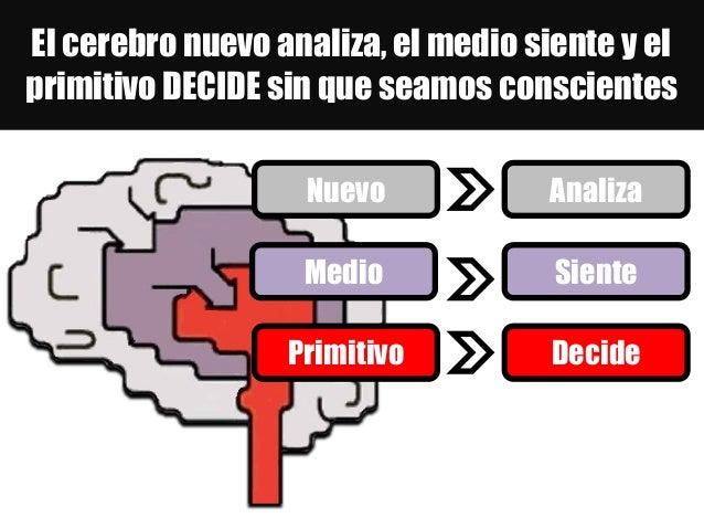 El cerebro nuevo analiza, el medio siente y el primitivo DECIDE sin que seamos conscientes Primitivo Nuevo Medio Analiza S...