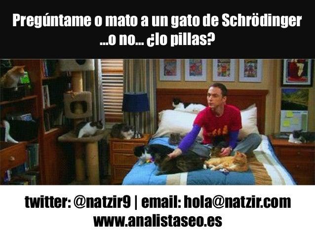 Pregúntame o mato a un gato de Schrödinger …o no… ¿lo pillas? twitter: @natzir9 | email: hola@natzir.com www.analistaseo.es