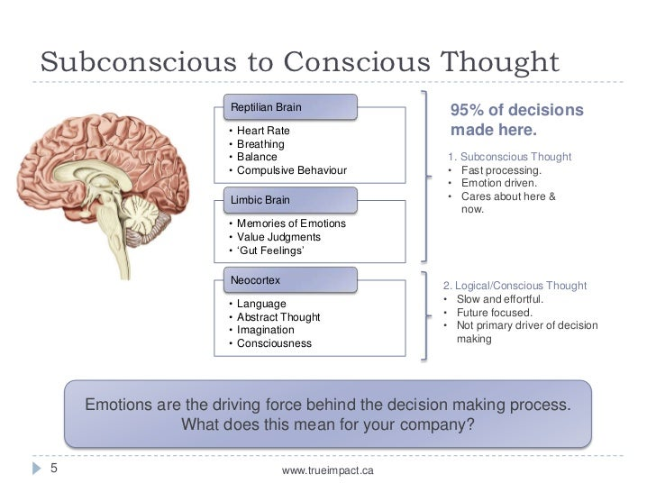 the heart and mind in decision making Topic : role of heart and mind in decision making responsibilities are more important so react like an intellectual not like a fool.
