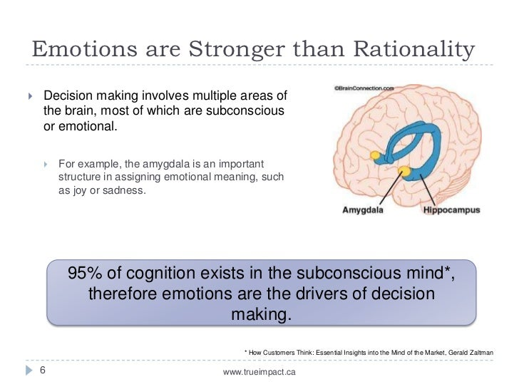 logic and emotion in decision making
