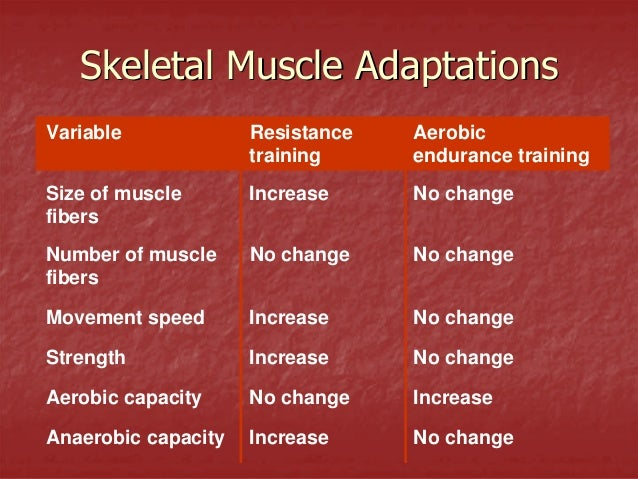 Increase muscle strength but not size