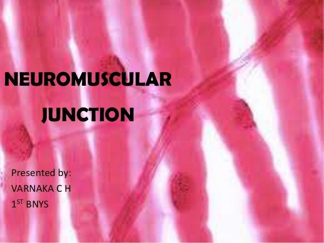 NEUROMUSCULAR JUNCTION Presented by: VARNAKA C H 1ST BNYS