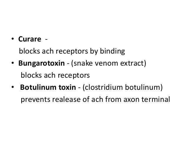 • Curare blocks ach receptors by binding • Bungarotoxin - (snake venom extract) blocks ach receptors • Botulinum toxin - (...