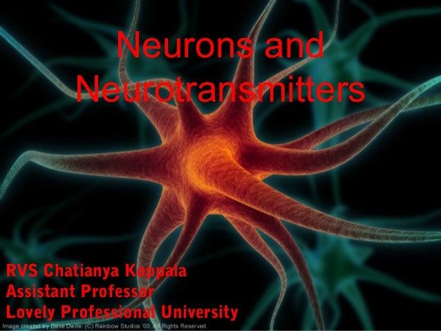 Neurons and Neurotransmitters RVS Chatianya Koppala Assistant Professor Lovely Professional University