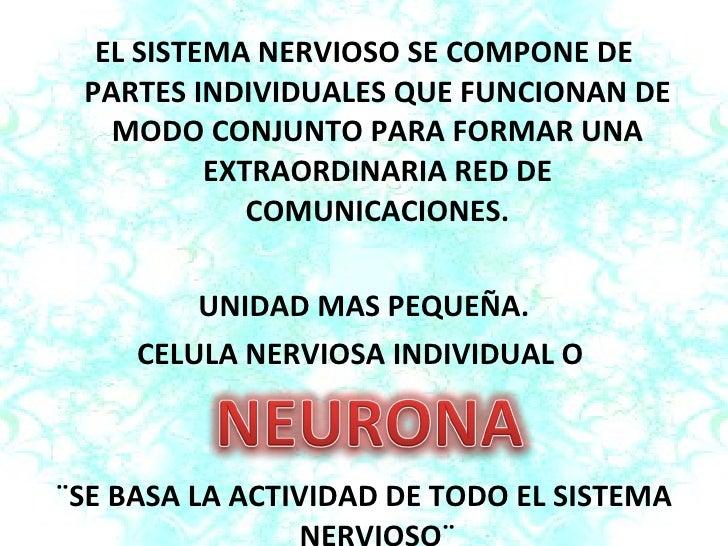 <ul><li>EL SISTEMA NERVIOSO SE COMPONE DE PARTES INDIVIDUALES QUE FUNCIONAN DE MODO CONJUNTO PARA FORMAR UNA EXTRAORDINARI...