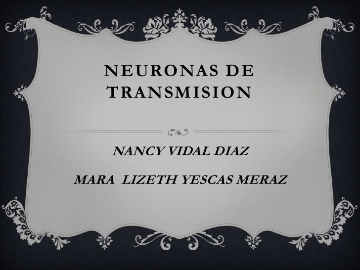 NEURONAS DE   TRANSMISION    NANCY VIDAL DIAZMARA LIZETH YESCAS MERAZ