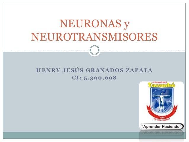 HENRY JESÚS GRANADOS ZAPATA CI: 5,390,698 NEURONAS y NEUROTRANSMISORES