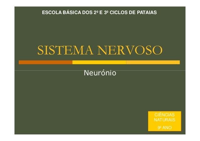 ESCOLA BÁSICA DOS 2º E 3º CICLOS DE PATAIAS  SISTEMA NERVOSO Neurónio  CIÊNCIAS NATURAIS 9º ANO