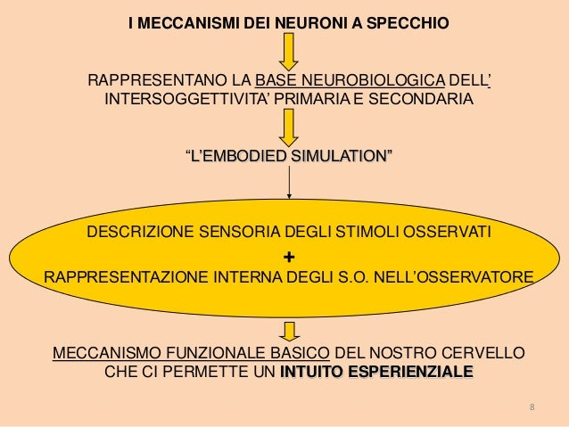 Neuroni Specchio C