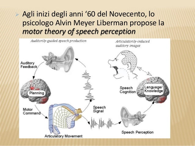 study on the motor theory of speech perception Implicit in motor theory: speech is a special type of sound the perception of speech is a human-specific attribute motor theory fant, 1967 13 general auditory theory speech sounds are special perception of non-speech stimuli duplex perception trading relations articulatory knowledge is essential cross-modal integration  2010_11_30 author.