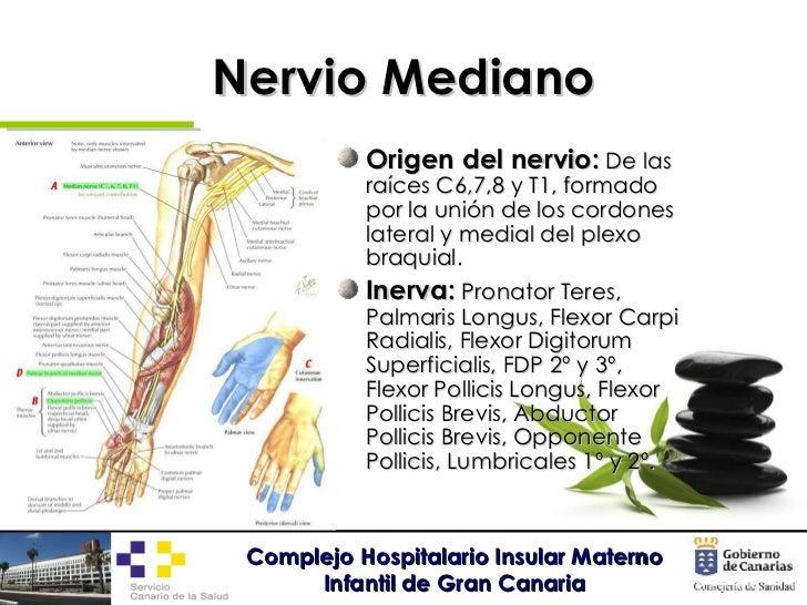 Neuropatías por atrapamiento de miembro superior