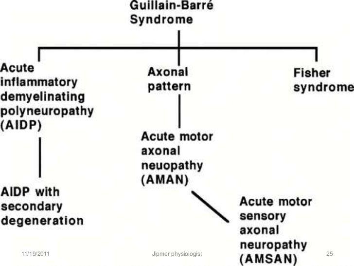 neuropathies  u0026 myopathies