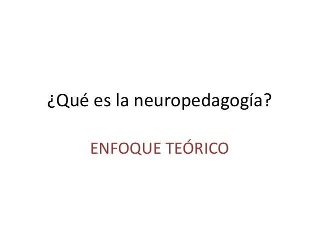 ¿Qué es la neuropedagogía? ENFOQUE TEÓRICO