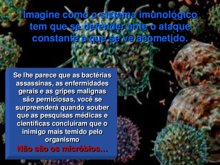 Neuropeptideos Slide 2