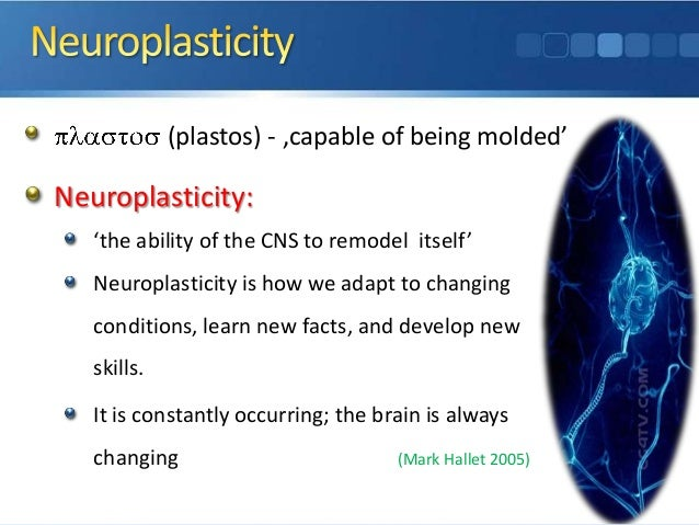 Introduction To Neuroplasticity Amp Its Application In Neuro