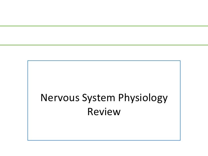 Nervous System Physiology         Review